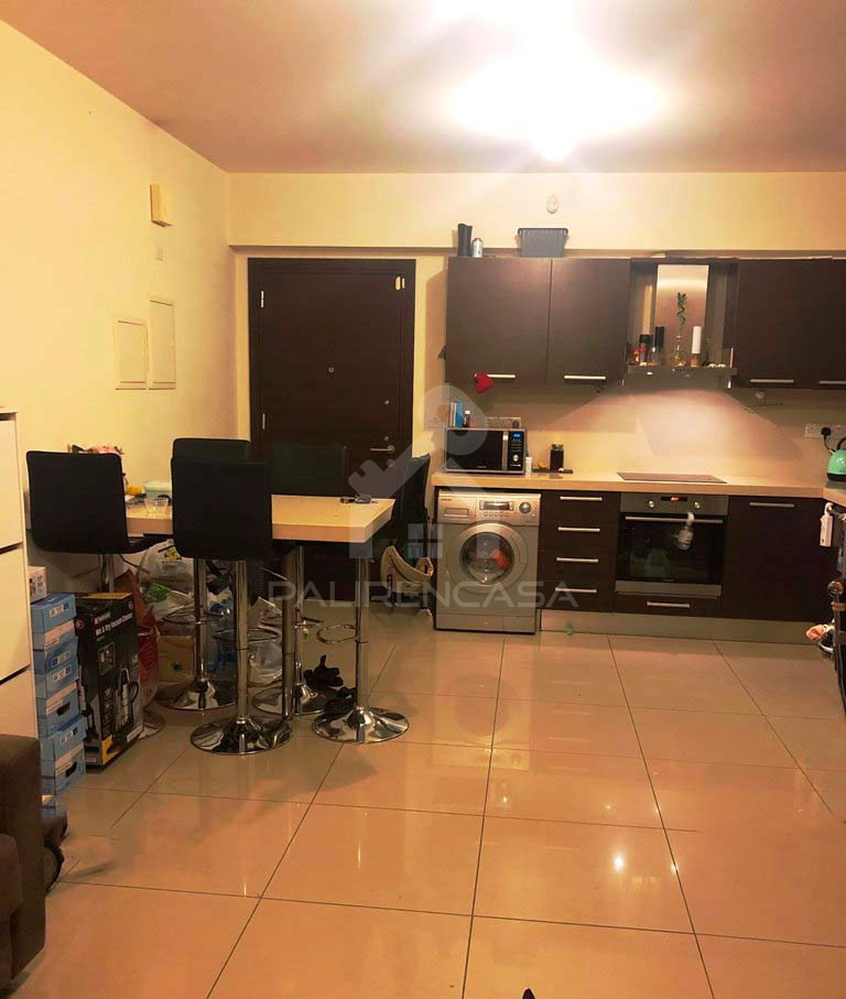 1-Bedroom Apartment in Pallouriotissa
